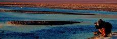 Salar de Atacama (Laguna Chaxa e Reserva Flamingo)