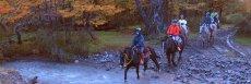Horse Ride Estancia Lazo