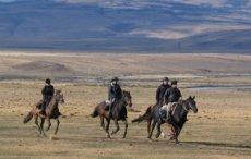Sierra Horseback Riding