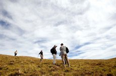 Trekking Ara O Te Tangata Manu: The Birdman Path