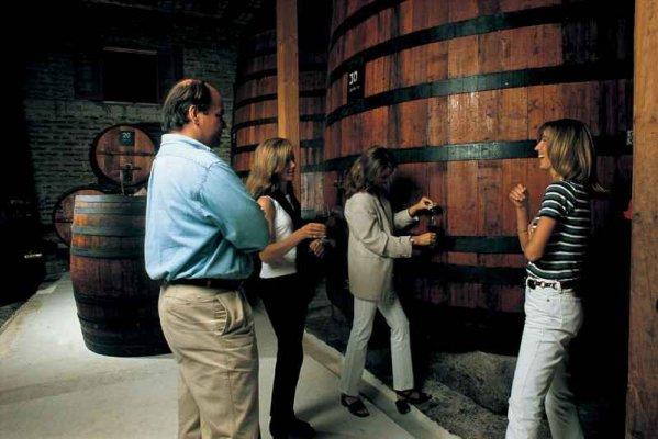 Rota do Vinho de Colchagua