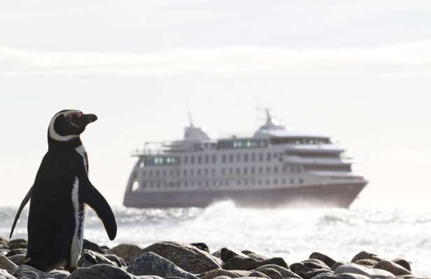Cruzeiro Ventus Australis / Ushuaia - Punta Arenas