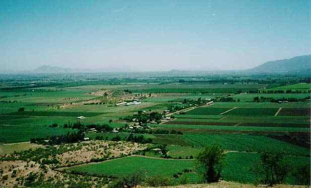 Valle del Maipo - Viña Undurraga - Viña Santa Inés de Martino