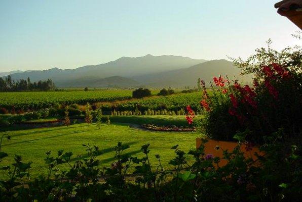 Rota do Vinho do Vale Casablanca