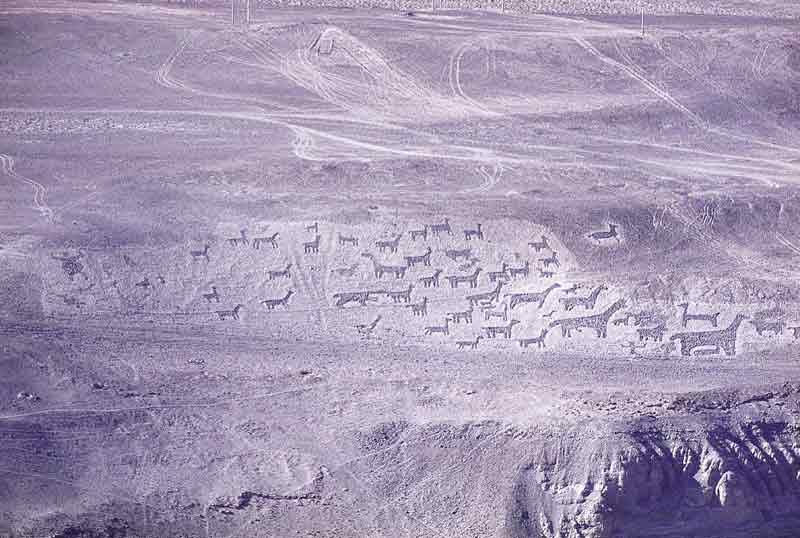 Pintados Geoglyphs and Humberstone