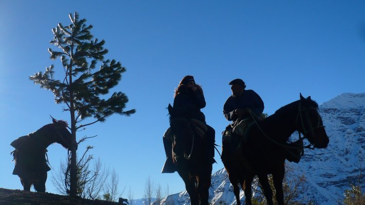 Horseback riding Maipo Valley.