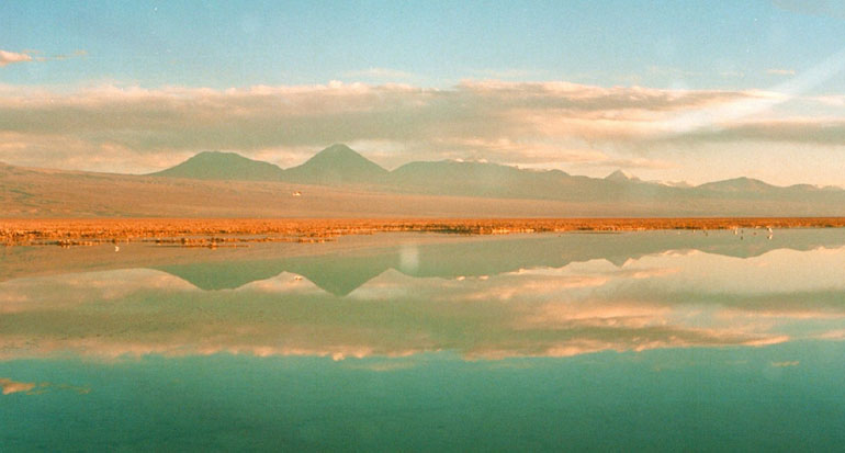 Altiplanic Lagoons and Salt