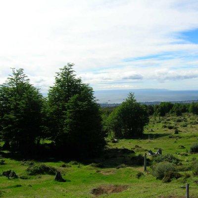 Trekking in Magallanes Reserve