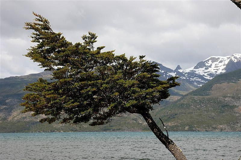 Torres Del Paine e Puerto Natales
