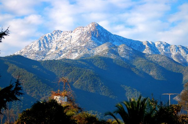 La Campana National Park and Olmue